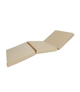 100% WHEY PROTEIN - 920 D